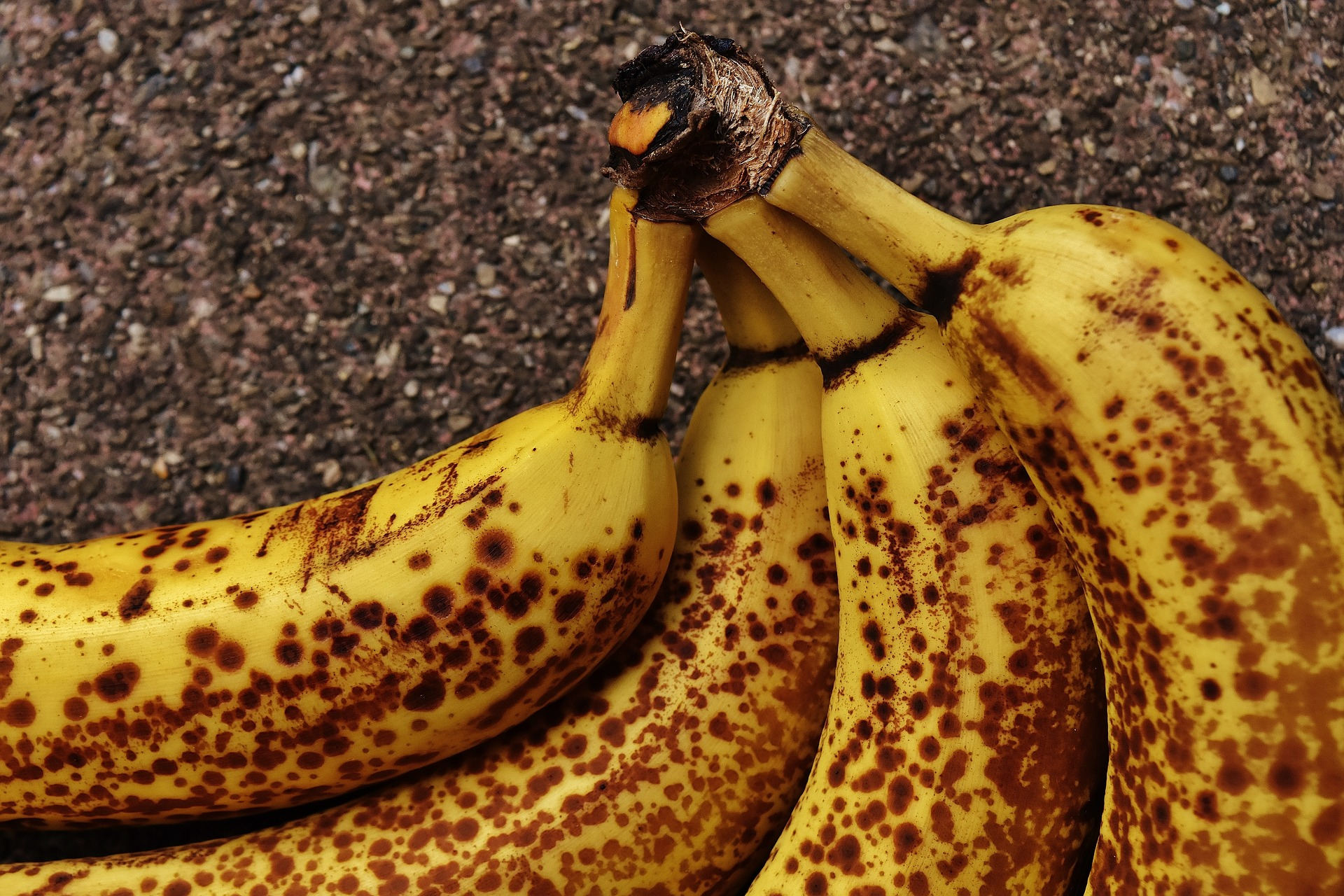 A bunch of brown bananas