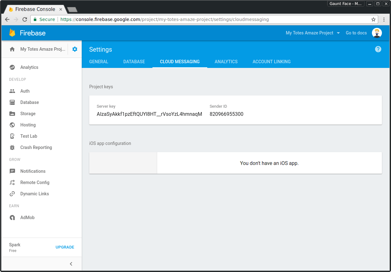 Firebase Project Cloud Messaging Menu