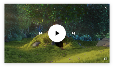 Media playback controls in a Picture-in-Picture window